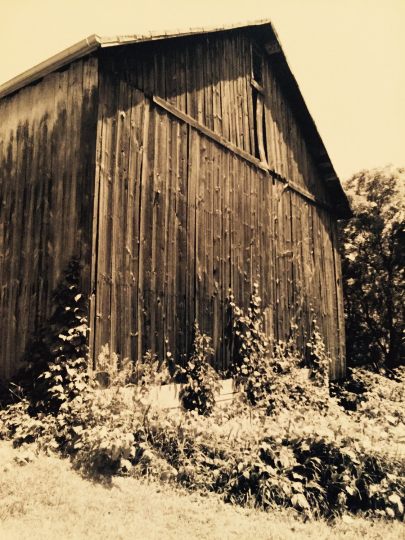 Barn Side Photography Print